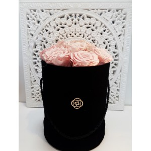 10 wiecznych róż